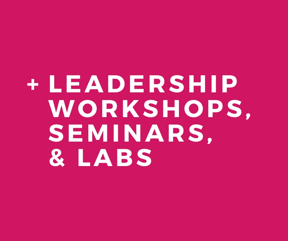 Skidmore Consulting - Leadership Labs Service