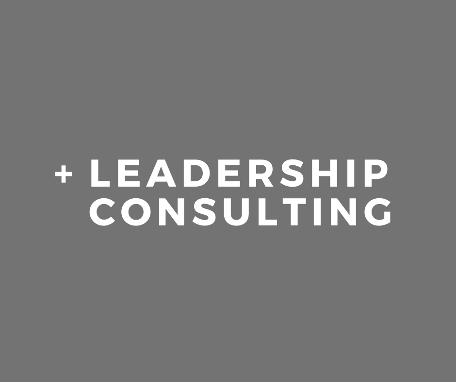 Skidmore Consulting - Leadership Consulting Service