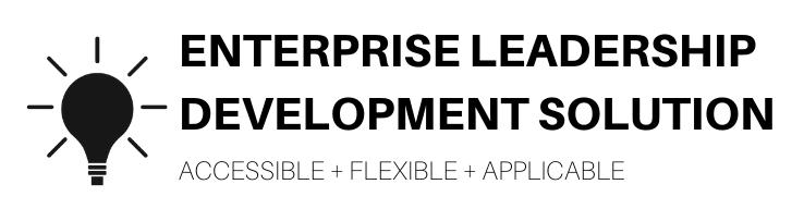 Enterprise Leadership Development Solution from Skidmore Consulting
